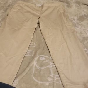 J.jill chino pants